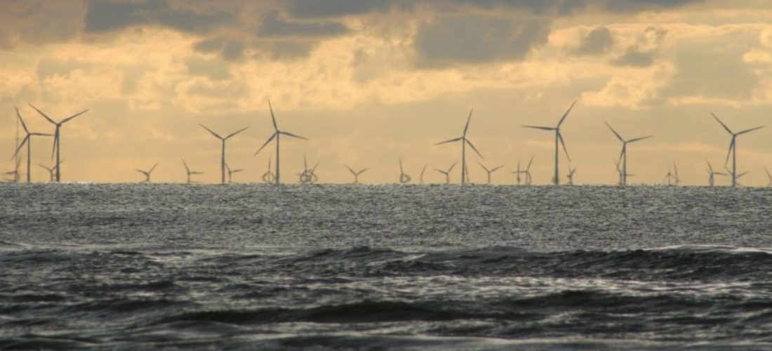 Offshore wind 450 GW, Europe needs up to 2050